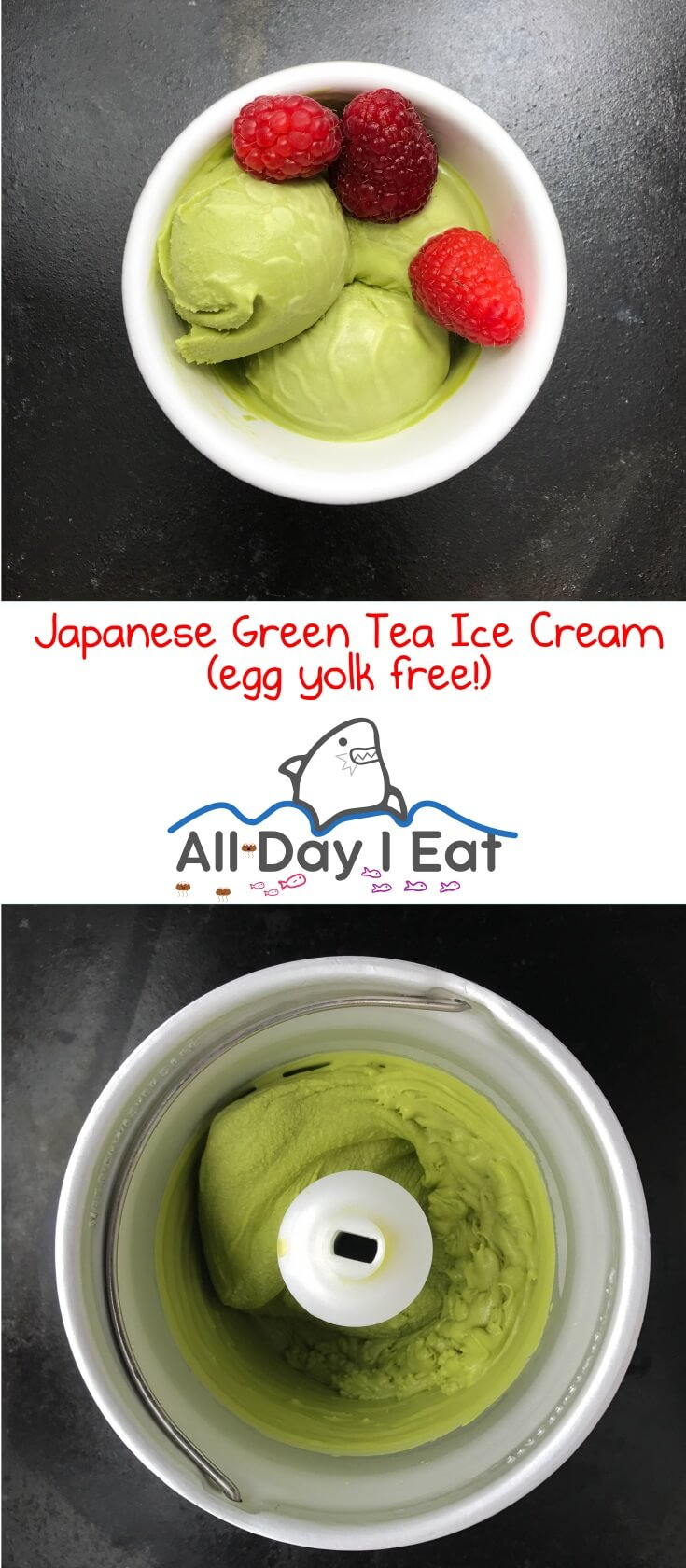 Japanese Green Tea Ice Cream (egg yolk free!). A tasty and reduced guilt way to increase your green tea consumption and satisfy your sweet tooth! | www.alldayieat.com