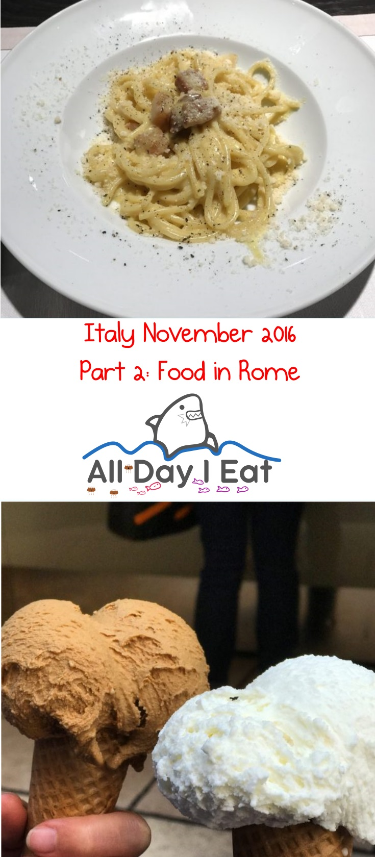 Italy November 2016 Part 2: Food in Rome - Ideas and info for your next visit! | www.alldayieat.com