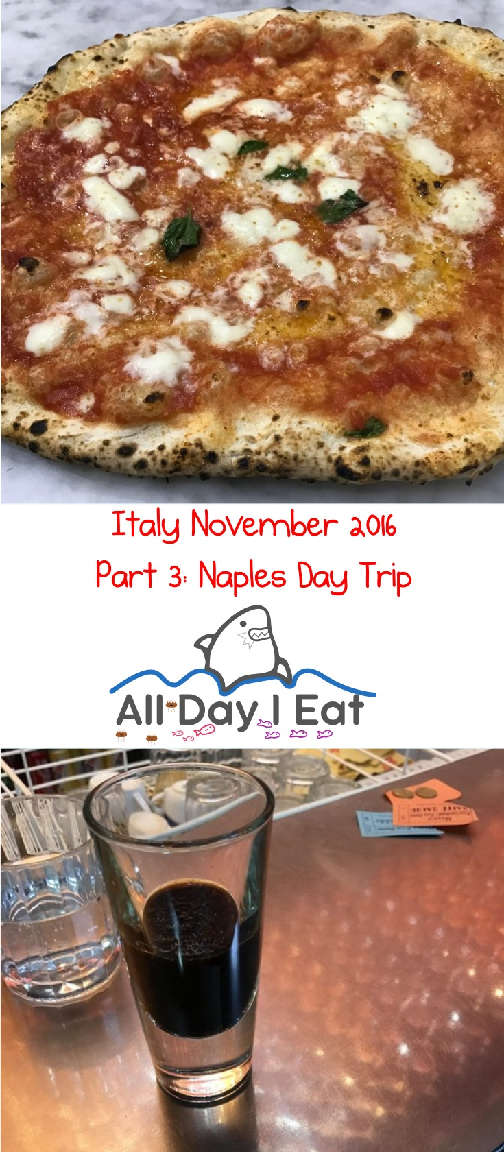 Italy November 2016 Part 3: Naples Day Trip - Ideas for your next visit | www.alldayieat.com