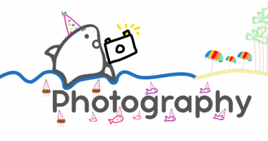 Lessons Learned from One Year of Blogging Part 2: Photography and 5 Regrets