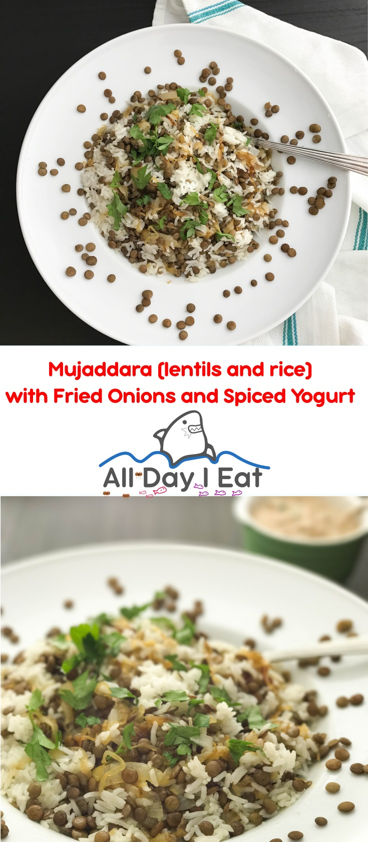 Mujaddara (lentils and rice) with Fried Onions and Spiced Yogurt | www.alldayieat.com