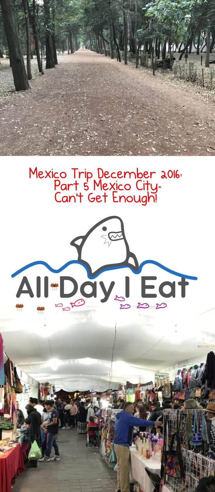 Mexico Trip December 2016: Part 5 Mexico City Can't Get Enough!. See what we did in the Condesa and Coyoacan neighborhoods!| www.alldayieat.com