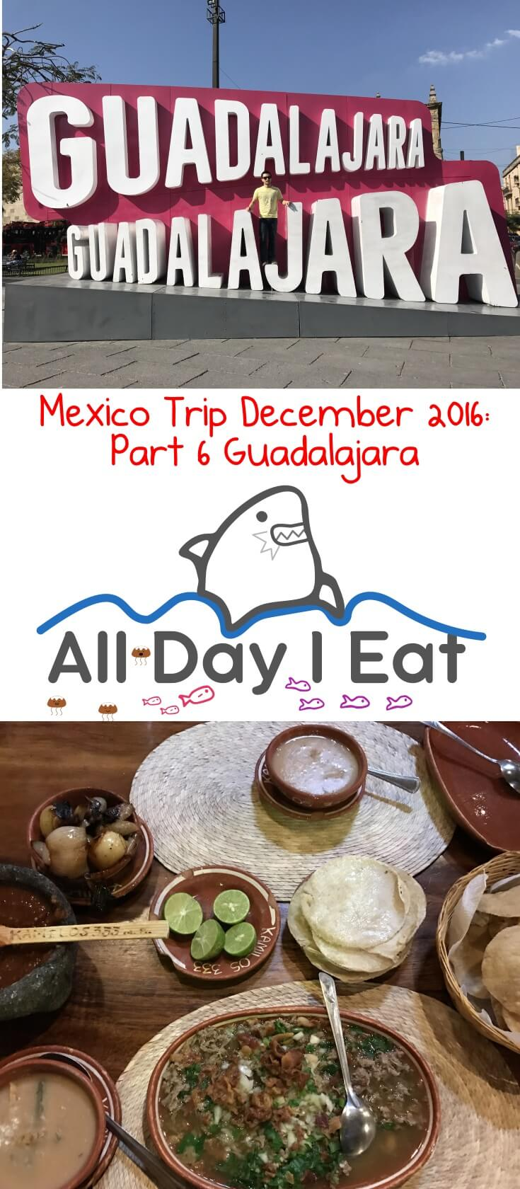 Mexico Trip December 2016: Part 6 Guadalajara. A city famous for delicious food and art! Come see what to do and where to eat some of the regional specialties! | www.alldayieat.com