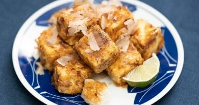 Tofu Ryouri – Cooking with Tofu Cookbook