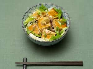 tofu donburi with dashi ankake sauce and green onions