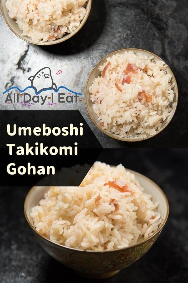 Umeboshi Takikomi Gohan all day i eat like a shark
