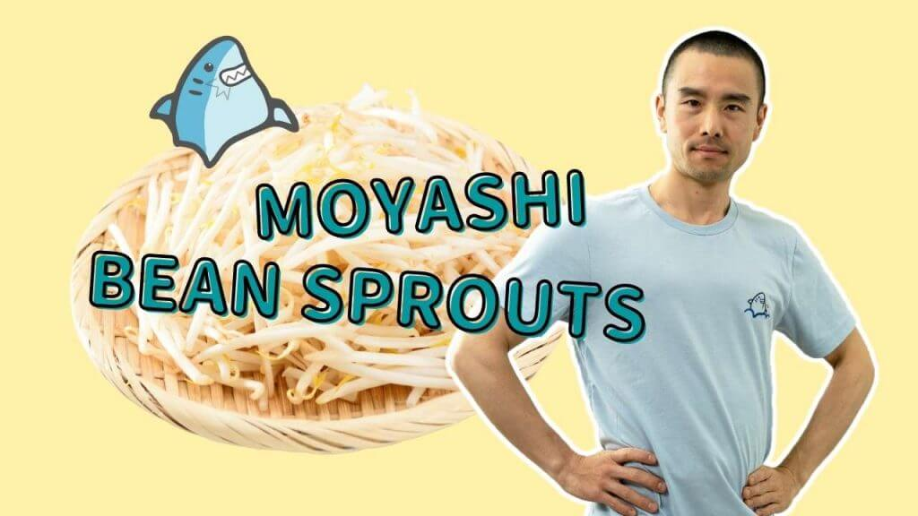 Moyashi bean sprout and pat