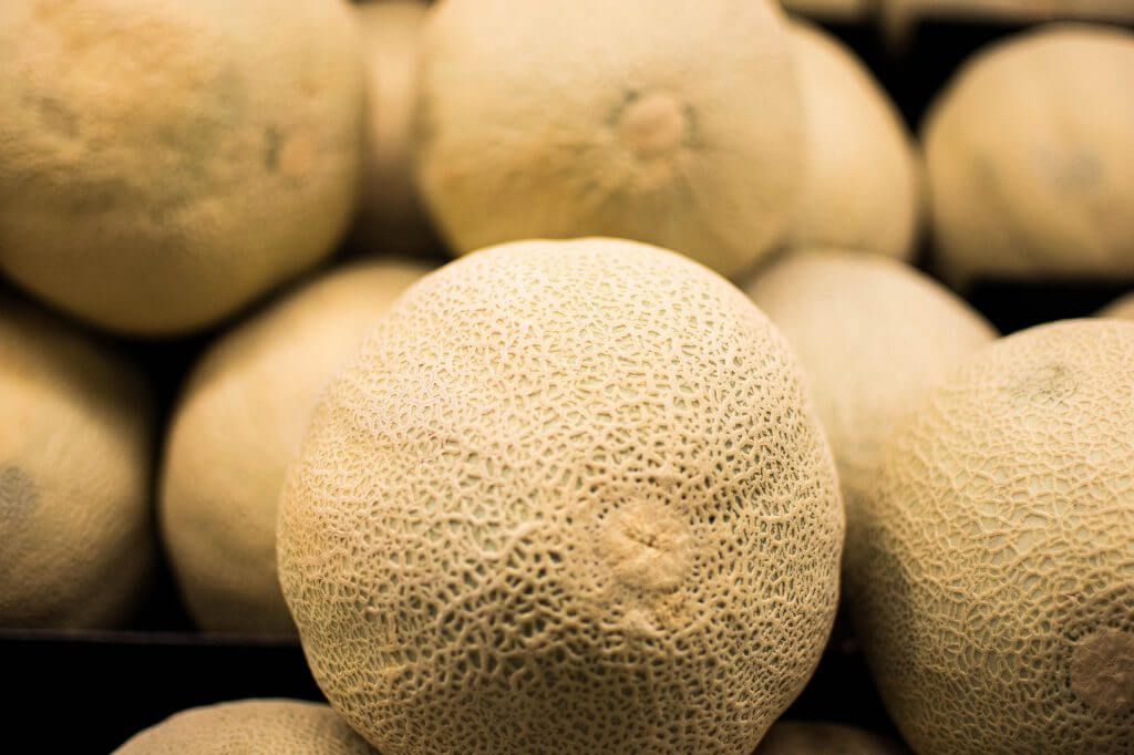 eat-sapporo-japan-summer-yubari-melon-cantaloupe-family